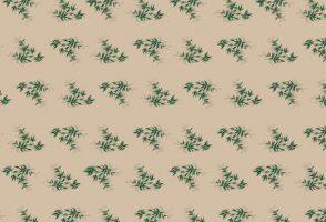 """Vetvrij Papier """"Feel Green"""" 34 X 28 Cm 1000st."""